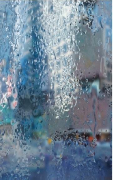 RainWallpaper截图3