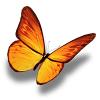 金蝶转转发点赞