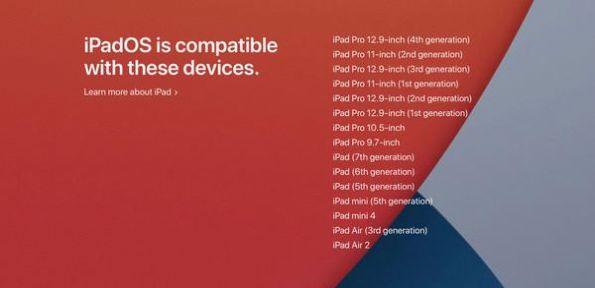 iPadOS 14.3开发者截图3