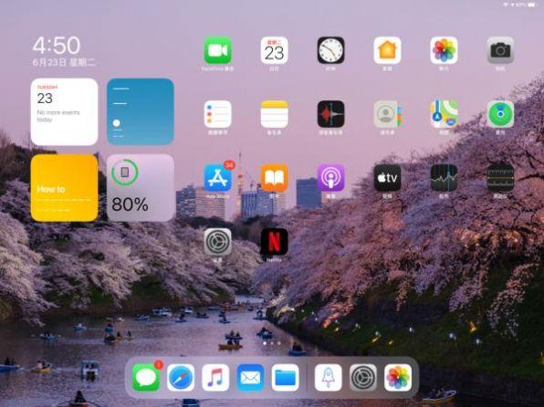 iPadOS 14.3开发者截图1