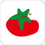 蕃茄田艺术