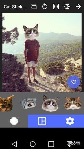 猫头贴纸截图2