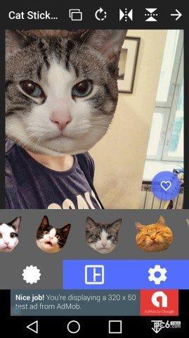 猫头贴纸截图1
