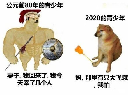 肌肉doge与小废狗表情包截图1
