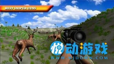 狙击野鹿手截图0